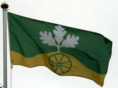 Delingsdorfer Flagge im Wind